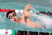 Swimming  Action 1-17-12