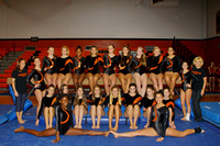 Gymnastics Team & Action